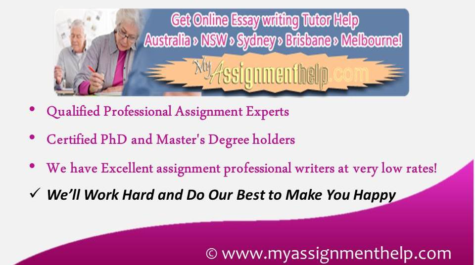 essay writing expert